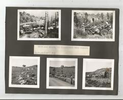 LIBAN HAMMANA ET SES ENVIRONS 10 PHOTOS TIREES D'UN ALBUM AVEC MILITAIRES FRANCAIS 1939 - Places