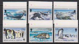 British Antarctic Territory 1992 WWF Seals And Penguins 6v (+margin) ** Mnh (39721E) - Ongebruikt