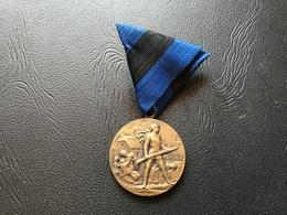 Medaille Commémorative De La Guerre De Libération 1818- 1920 ESTONIE - 1914-18