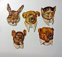 CHROMOS DECOUPIS     5  TETES EN COL BLANC    CHIEN   CHAT     LAPIN     SOURIS - Animals