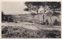 HINDHEAD - DEVILS PUNCH BOWL - Surrey