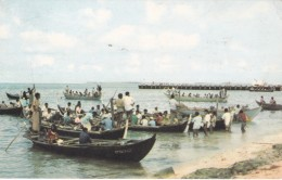 GAN. ADDU ATOLL - NATIVE DHONIES - Maldives