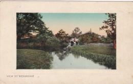 WEYBRIDGE - Surrey