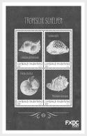 H01 Caribbean Netherlands 2018 Shells Black White Saba MNH Postfrisch - Curaçao, Antille Olandesi, Aruba