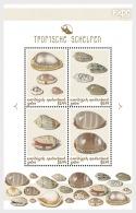 H01 Caribbean Netherlands 2018 Shells Colour Saba MNH Postfrisch - Niederländische Antillen, Curaçao, Aruba