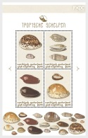 H01 Caribbean Netherlands 2018 Shells Colour Saint Eustatius MNH Postfrisch - Niederländische Antillen, Curaçao, Aruba