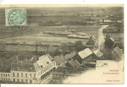 59 - ORCHIES / VUE PANORAMIQUE - Orchies