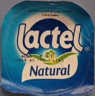 Egypt - Couvercle De Yoghurt Lactel (foil) (Egypte) (Egitto) (Ägypten) (Egipto) (Egypten) Africa - Milk Tops (Milk Lids)