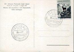 36222 Italia, Special Postmark 1967 Treviso 40^ Adunata Nazionale Alpini - Militaria