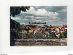 34   Castelnau Le Lez  Vue Panoramique - Castelnau Le Lez