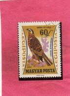 HUNGARY UNGHERIA MAGYAR 1962 AIR MAIL POSTA AEREA BIRDS FAUNA AVICOLA MARSH HARRIER BIRD FALCO DI PALUDE 60f USATO USED - Posta Aerea