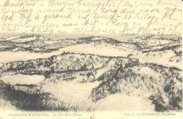 Westende - La Mer Et Les Dunes - Westende
