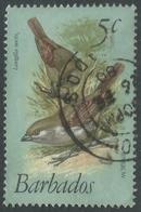 Barbados. 1979 Birds. 5c Used. SG 624 - Barbados (1966-...)