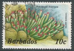 Barbados. 1985 Marine Life. 10c Used. No Date Imprint. SG 797B - Barbados (1966-...)