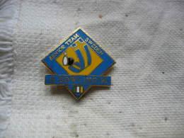 Pin's Du Senior Team De Bowling En SUEDE (Sweeden). 19 Bowling 950. - Bowling