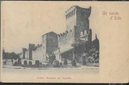 CASTELLO D'ESTE - FORMATO PICCOLO - EDIZ VIERBUCHER MILANO - VIAGGIATA DA ESTE 1900 - Castelli