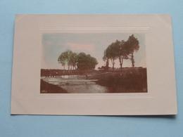 PAYSAGE - LANDSCHAP ( NPG Berlin 835/9 - 835/10 - 835/5 - 835/3 ) Anno 1908 > Hoogstraeten ( Voir Photo ) 4 CP ! - Cartes Postales
