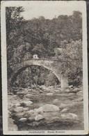 PAMPARATO (CN) - PONTE ROMANO - FORMATO PICCOLO - VIAGGIATA DA PAMPARATO 31.08.1931 - Ponti