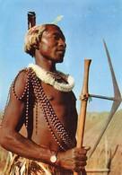 Swaziland - Docteur - Plasmarine - Swaziland