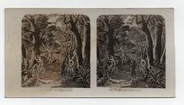 Ancienne CARTE Vue Stéréoscopique Mort D'Absalon Bible Religion Catholique - Photos Stéréoscopiques