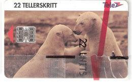 Norway - Tele Ice Bears, Svalbard - Norway