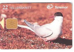 Norway - Svalbard - Telenor Telecard  - Bird, Arctic Tern - Norway