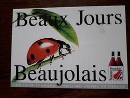 L8/27bis Beaujolais. Beaux Jours Beaujolais - Advertising