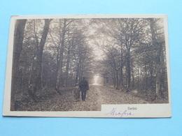 HERBST ( Phot. U Verlag Frans SCHILLING ) Anno 1911 > TURNHOUT ( Zie Foto's ) ! - Cartes Postales