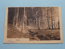 SOMMER ( Phot. U Verlag Frans SCHILLING ) Anno 1911 > TURNHOUT ( Zie Foto's ) ! - Autres