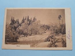 WINTER ( Phot. U Verlag Frans SCHILLING ) Anno 1911 > TURNHOUT ( Zie Foto's ) ! - Cartes Postales
