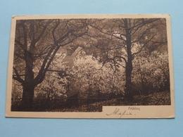 FRÜHLING ( Phot. U Verlag Frans SCHILLING ) Anno 1911 > TURNHOUT ( Zie Foto's ) ! - Sonstige