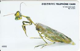 SOUTH KOREA - Insect, Korea Telecom Telecard(W10000), Used - Korea, South