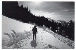 La POSTE -- 1991 -- Facteur Dans La Neige  ........... à Saisir - Poste & Facteurs