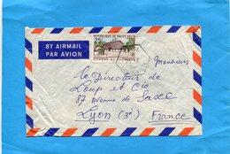 MARCOPHILIE Lettre -Haute Volta- Pour Françe- Cad-hexagonal KYNDI 1965 -Stamp N°100 Campement - Upper Volta (1958-1984)