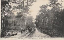 Gironde : LE COURNEAU : Route En Foret - Francia