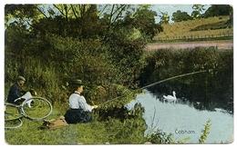 COBHAM : FISHING - Surrey