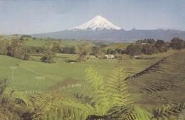 Postcard Mt Egmont New Plymouth New Zealand My Ref  B22759 - New Zealand