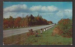 Along A Scenic Route - Unknown Location - Unused Corner Wear - Postcards