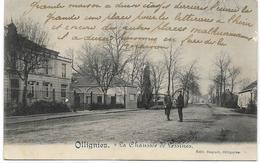 OLLIGNIES : La Chaussée De Lessines - Petite Animation -  1919 - Lessines