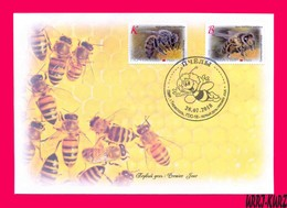 TRANSNISTRIA 2018 Nature Fauna Insects Bees Bee On Flower FDC - Honeybees