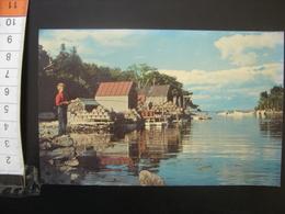 Carte Postale Back Cove New Harbor Maine Enfant Qui Peche Vintage - Etats-Unis