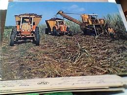 CUBA : Corte Mecanizado De La Cana De Azucar TRACTOR  TRATTORE RACCOLATA CANNA DA ZUCCHERO  V1985  GU2824 - Cuba