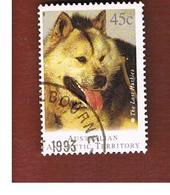 AAT AUSTRALIAN ANTARCTIC TERRITORY - SG 104  - 1994   DOGS: HUSKY          -  USED - Territorio Antartico Australiano (AAT)