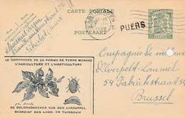 Puers , Griffe Linéaire Sur Entier Postal , Cachet  Antwerpen  6 , (carte Publicitaire  ,Eikevliet ( Puurs )) - Poststempel