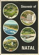 Natal Durban (Sud Africa) Vedute E Scorci Panoramici, Timbro Meccanico Rosso - Sud Africa