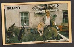 Ireland - Man, Donkey, Dog & Signpost - Unused - Writing On Back - Ireland