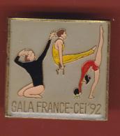 53345- Pin's..Gymnastique. - Gymnastics