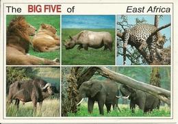 Wildlife Of East Africa (Kenia) The Big Five - Kenia