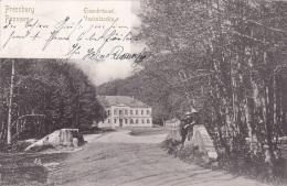 PRESSBURG - Eisenbrünnel, Gel.1900 - Slovaquie
