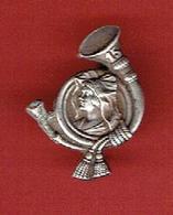 INSIGNE BROCHE ANCIEN 15e BATAILLON DE CHASSEURS ALPINS - Army
